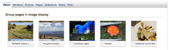 This is how a group home page will look using the plugin.