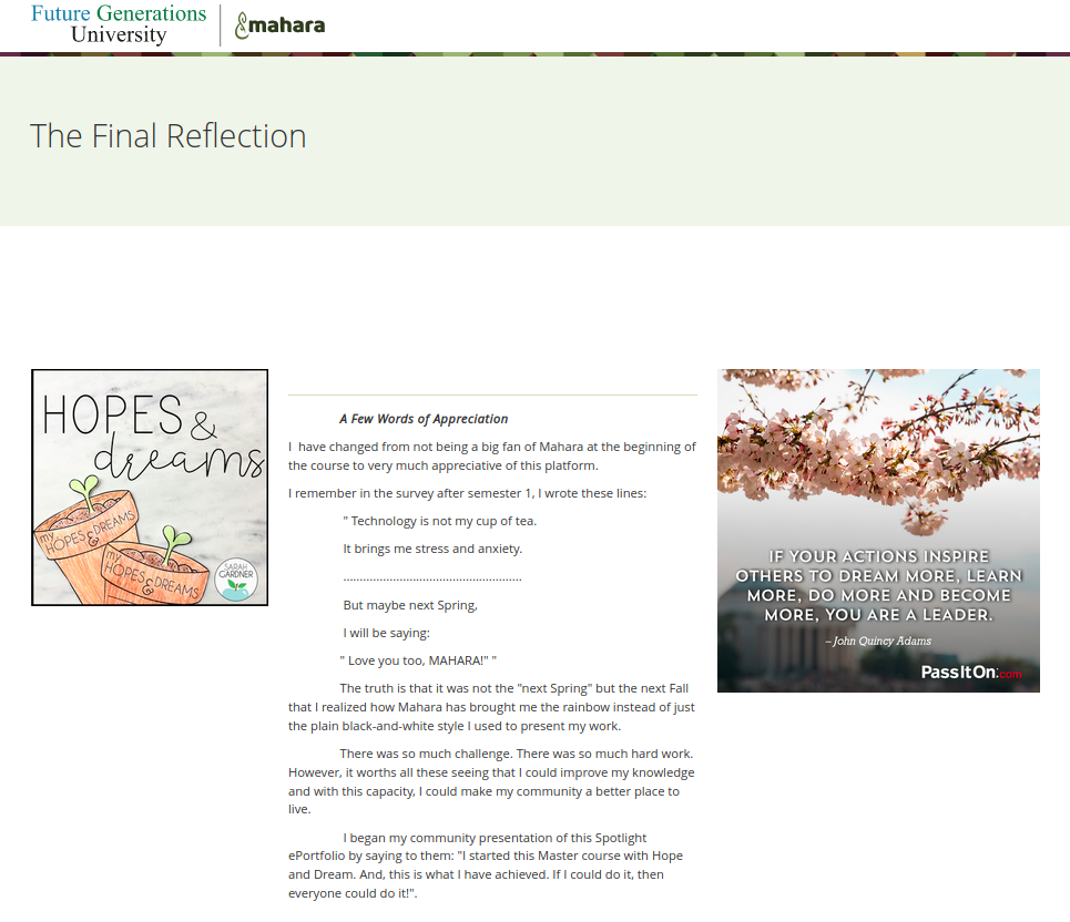Screenshot of the reflections page